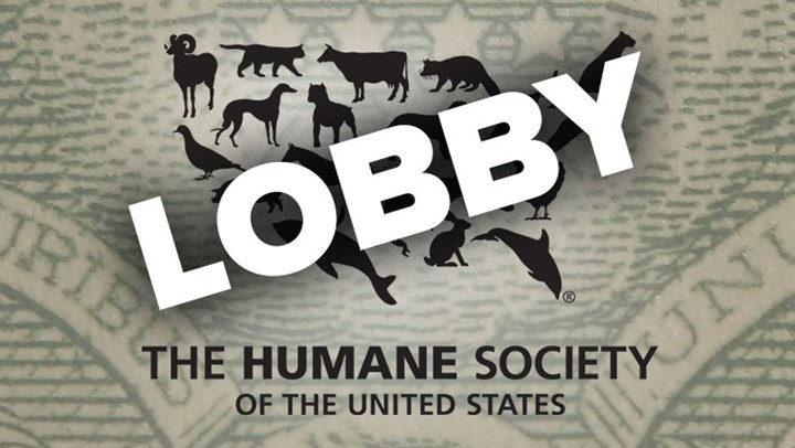 """HSUS Ruled a """"Lobbying"""" Organization"""