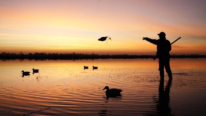 Zinke's $21 Million in DOI Grants Aid Wetlands Conservation