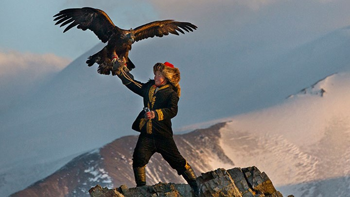 Falconry Brings the Hunting Heritage to Mainstream Films