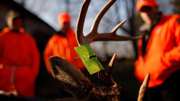 Raising Poachers' Fines Makes These Criminals Think Twice