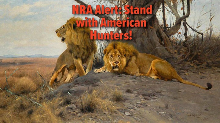 """NRA Pushes for a """"NO"""" Vote on CECIL Act Today"""