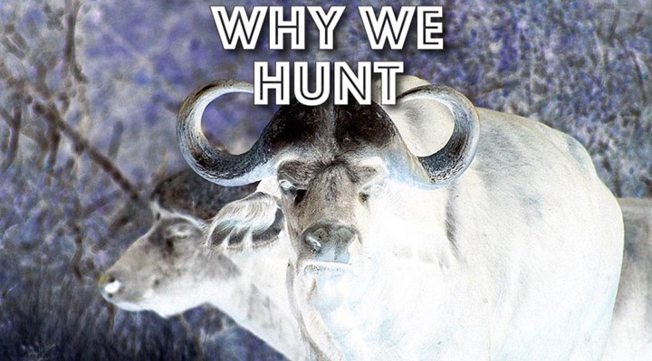 Hunting on History's Continuum