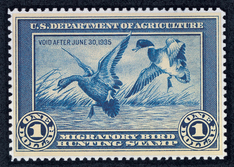 The Federal Duck Stamp is only one way hunters contribute the conservation and habitat restoration of waterfowl.
