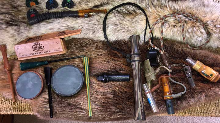 There's nothing like a shelter-in-place order to provide time for practicing your turkey calls. (Image by Peter Churchbourne.)