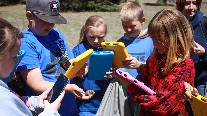 Children gather in the outdoors with electronic tables in hand to learn about a toad they have found.