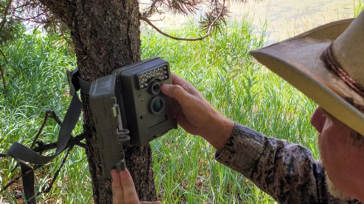 Arizona Bans Trail-Camera Usage by Hunters Beginning in 2022