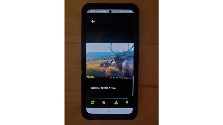 screenshot of cell phone trail camera interface