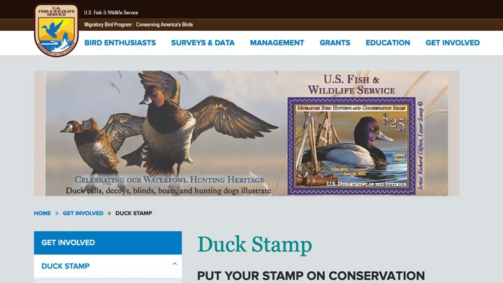 Hunting Themes to End for America's Duck Stamps?